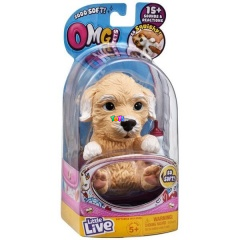 OMG Pets - OMG Poodles/ Golden retriever kiskutya